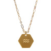 SURPRESA V Zodiac Necklace Plated Golden Pendant Constellation Necklace Astrology Choker surpresa v diffusers