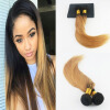 Ombre Color Brazilian Virgin Hair #1B Fading to #27 2Pcs/Lot Straight Hair Full Set Hair Wefts Extensions