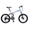 Joy Collection / Phoenix Folding Mountain Bike 20 inches shock-absorbing 21 speed dual disc brake mountain bicycle